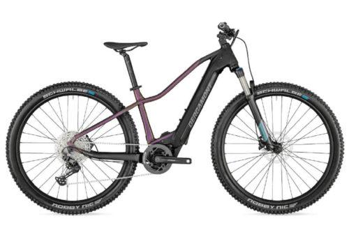 E-Bike Bergamont E-Revox Expert FMN 2021