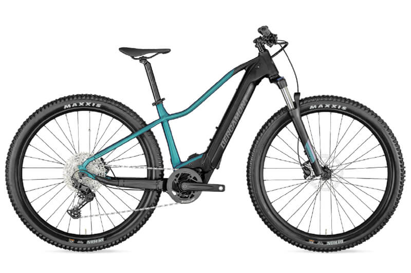 E-Bike Bergamont E-Revox Sport FMN 2021