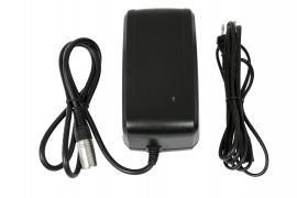 Giant Fast Charger (4A)